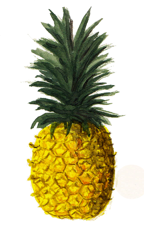 Pineapple+Watercolour