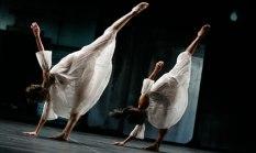 trisha-brown-dance-compan-006
